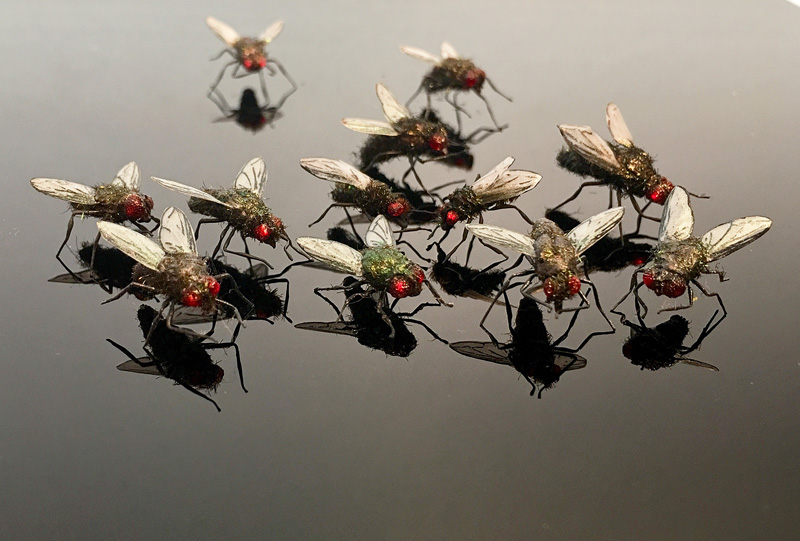 swarm of realistic housefly props